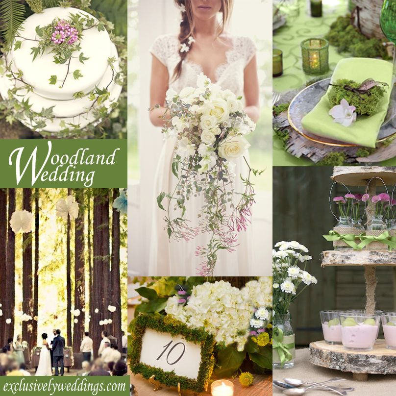 Woodland Wedding Theme Lots Of Moss And Natural Elements