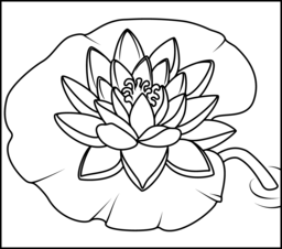 Water Lily - Online Coloring Page | Wood burning patterns | Lilies ...