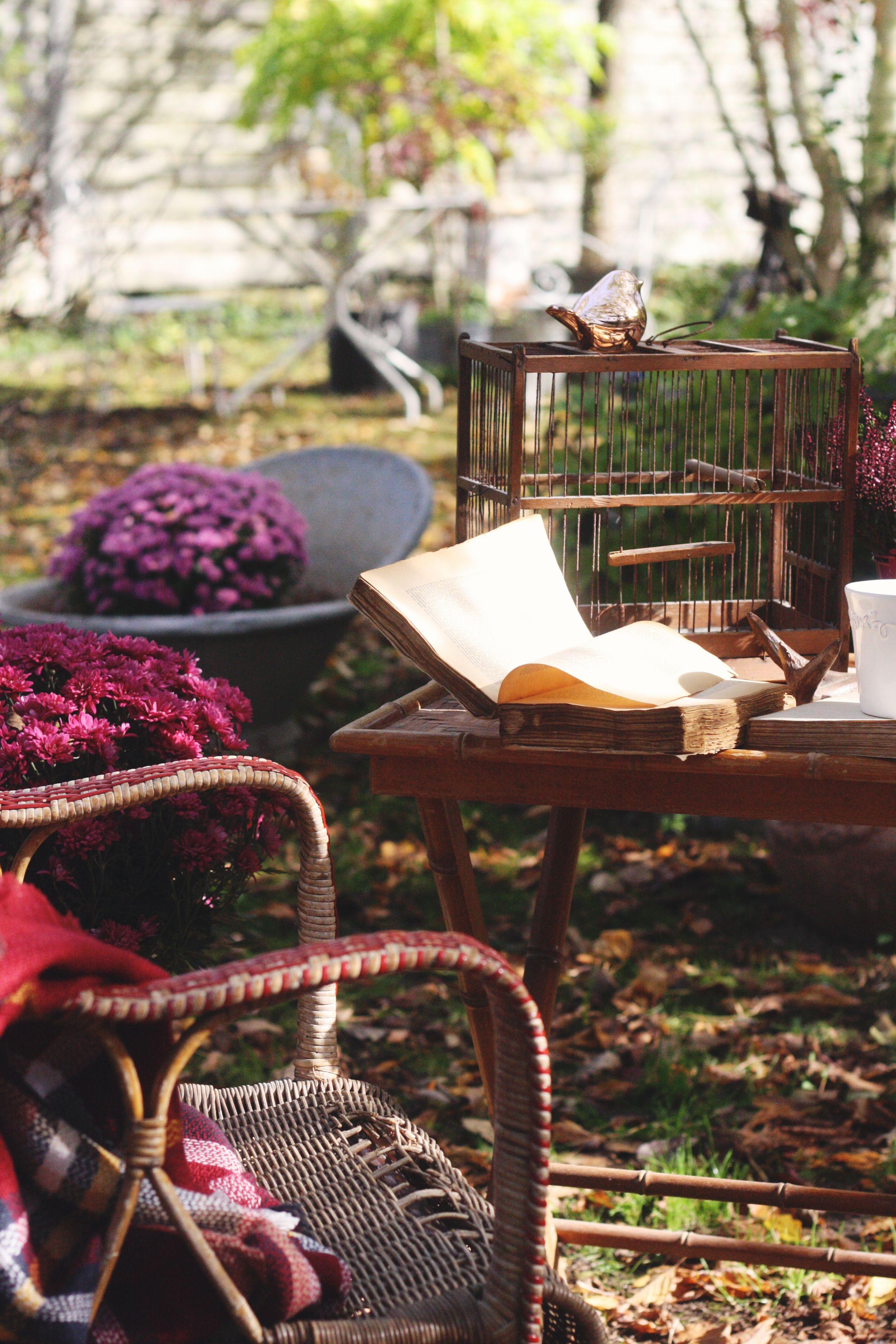 Déco de jardin, cage d\'oiseau ancienne en bois, livre ouvert ...