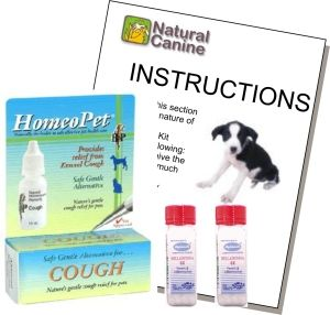 Collapsed Trachea Support Kit Natural Dog Remedies Dog Coughing