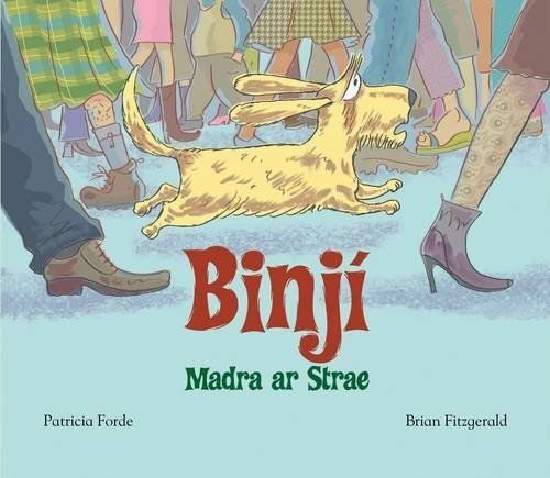 Binji: Madra Ar Strae by Patricia Forde, http://www.amazon.co.uk/dp/1906907293/ref=cm_sw_r_pi_dp_YNTErb1A7M3J7