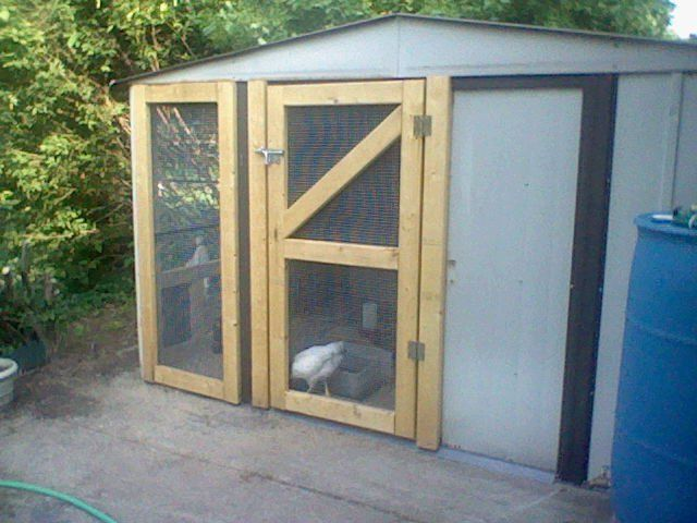 chicken coop out of a garden shed