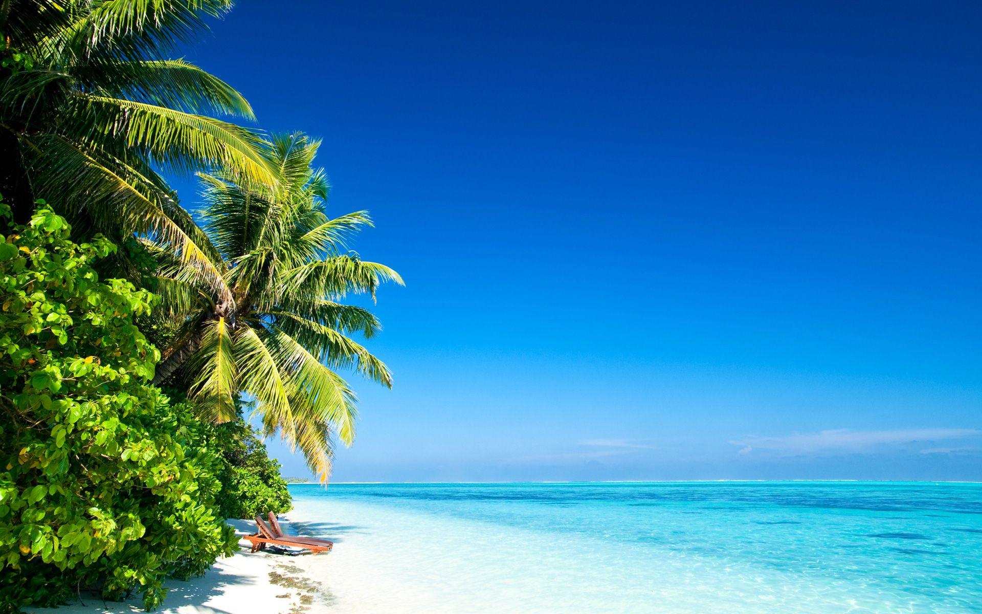 cool Diani Beach In High Resolution Diani beach, Strand