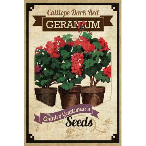 Leinwandbild Flower Packet Geranium in Braun/Grün Sommerallee Größe: 45,7 cm H x 30,5 cm B