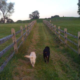 On Point Farm