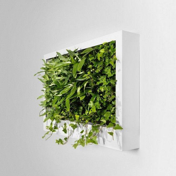 Interior Design Small Green Wall Design In Modern Home
