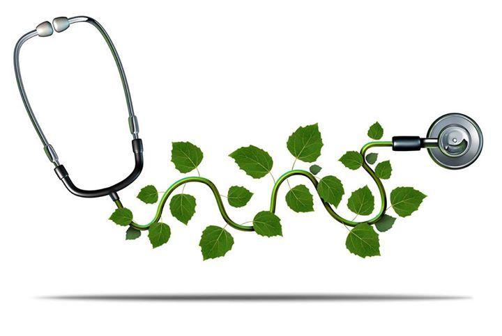 Homeopathy - an effective alternative says medico #homeopathy http://homeopathyplus.com/homeopathy-an-effective-alternative-says-medico/?utm_content=bufferfda9c&utm_medium=social&utm_source=pinterest.com&utm_campaign=buffer