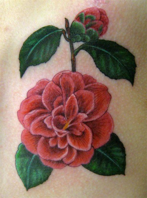 Camellia Flowertattoo Jpg 499 673 Tea Tattoo Tattoos Floral Tattoo