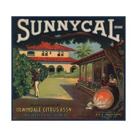 Clearwater Florida Cotee River Orange Citrus Fruit Crate Label Art Print