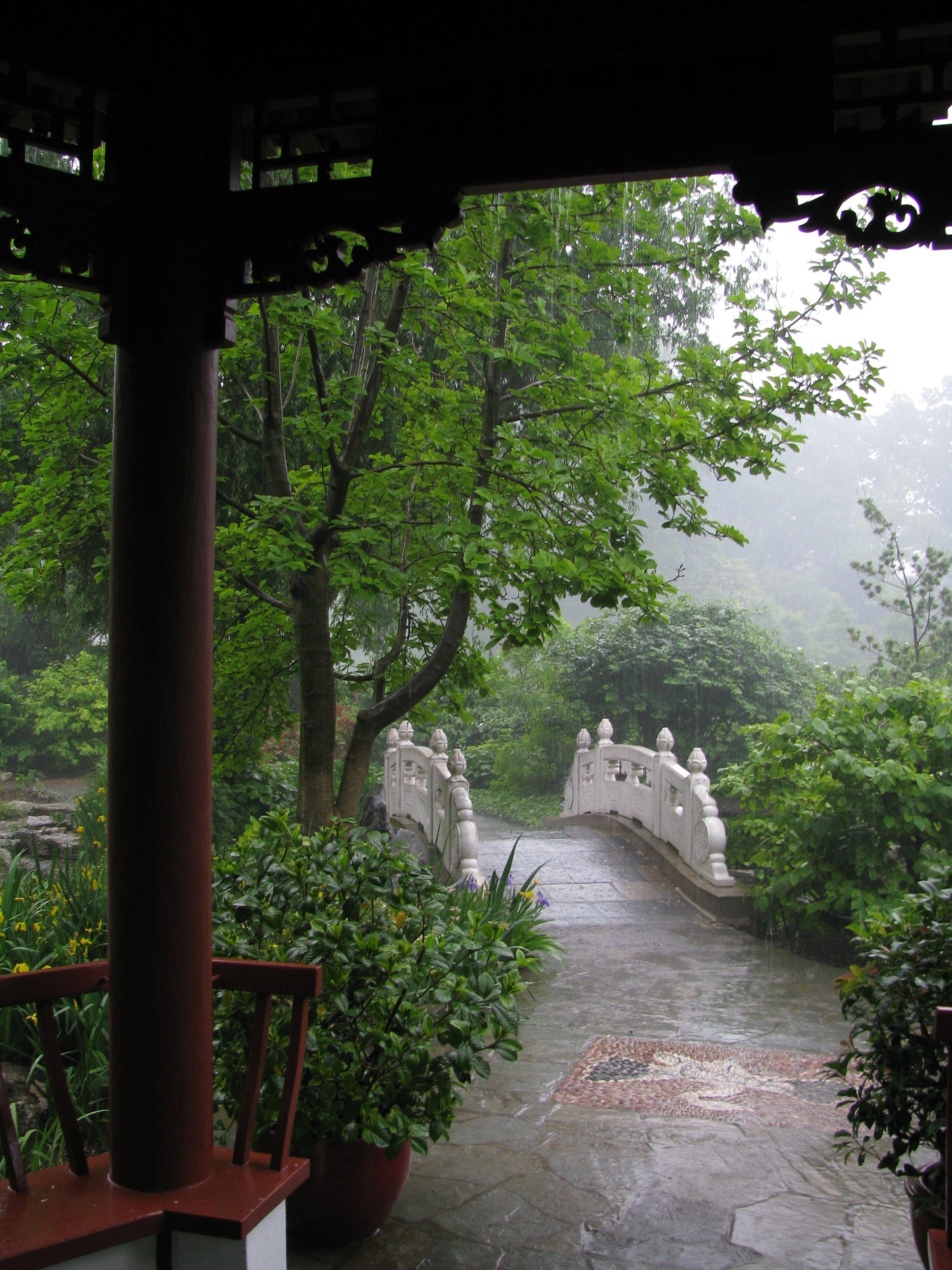 Watching the Rain in Nanjing Friendship Chinese Garden