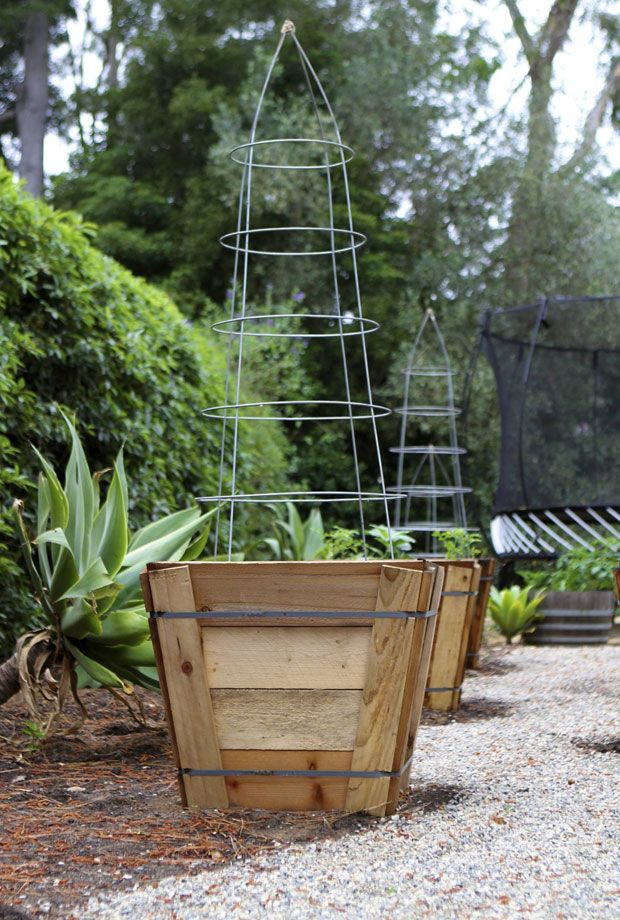 Trellis Upgraded From Upside Down Tomato Cage Tie Legs