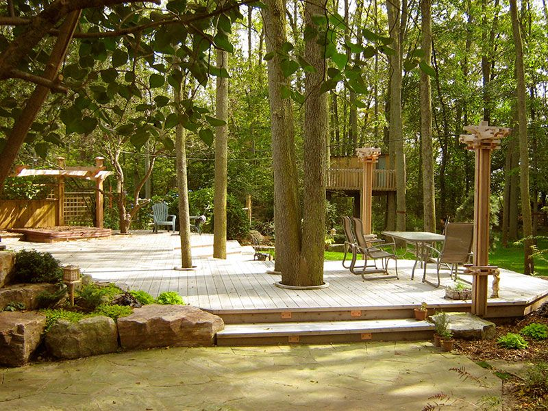 Photos - Inside and Out Gardens | Deck around trees ...