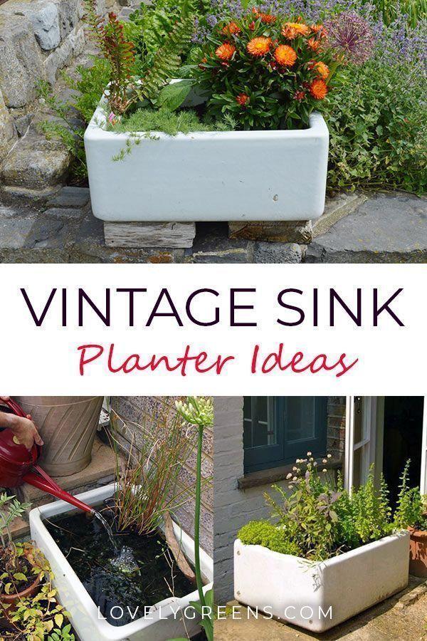 Ideen für den Anbau von Gemüse und Blumen in Vintage Sink Planters Ideen für den Anbau von Gemüse und Blumen in Vintage Sink Planters   Ideen für...