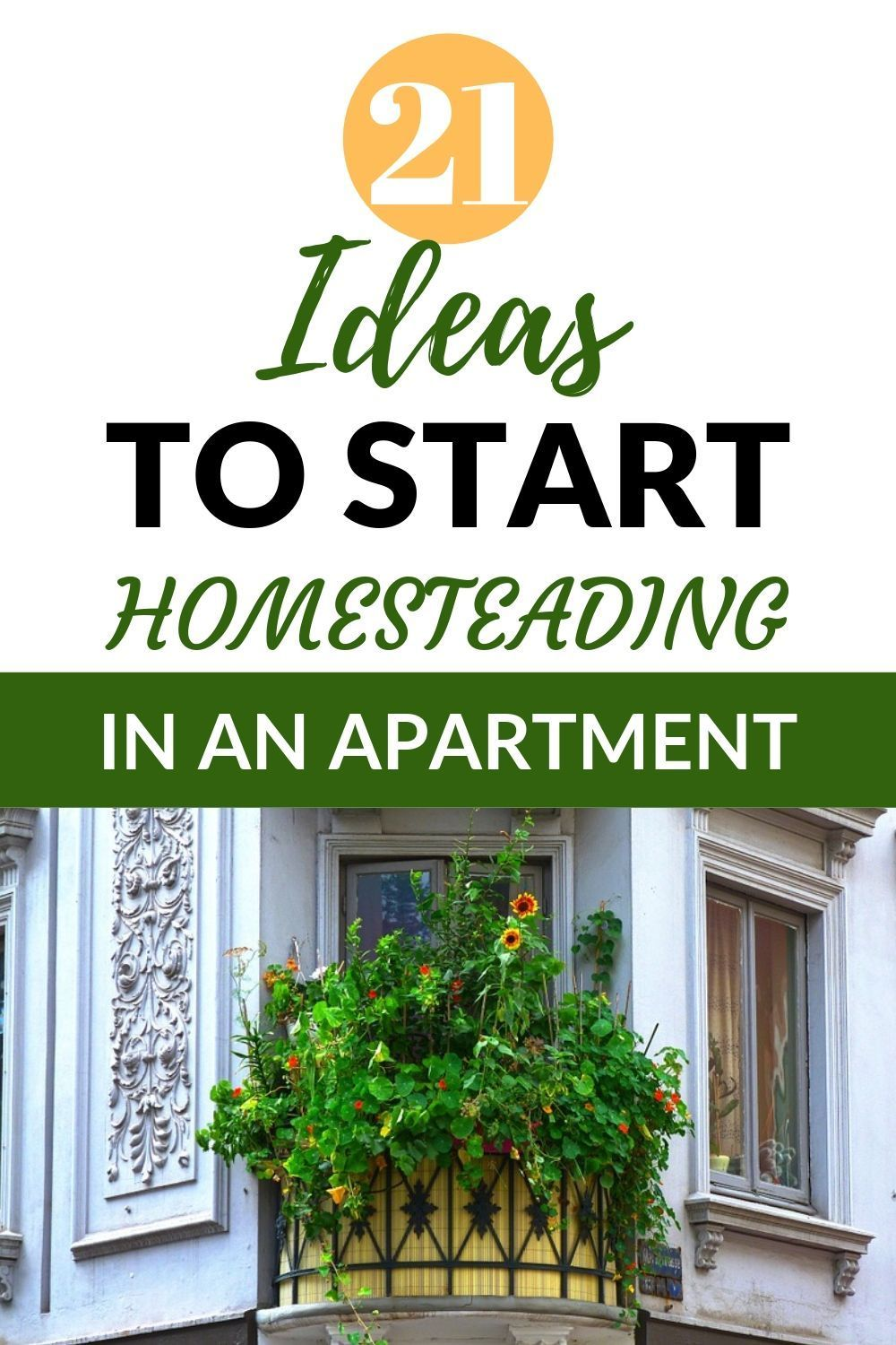 Photo of 21 Inspiring Ideas To Get Started With Apartment Homesteading   Healthy Fresh Homegrown by Tranquil Urban Homestead