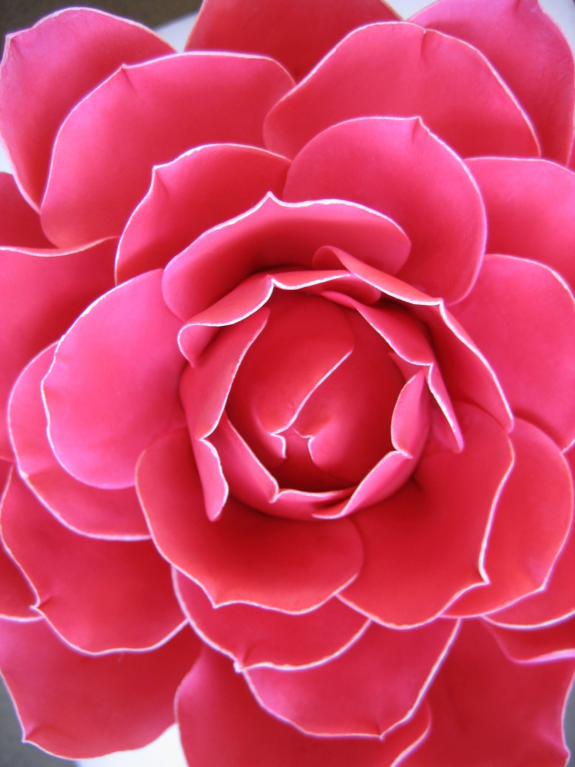 Handmade Gum Paste Camellia By Wendy Kromer Edible Art Rose Tutorial Gum Paste