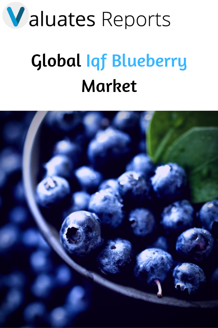 Global Iqf Blueberry Market Report 2019 Market Size