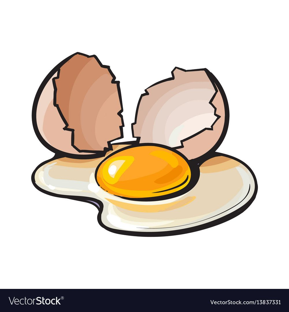 Cracked Broken And Spilled Chicken Egg Sketch Style Vector Illustration Isolated On White Background Hand Drawn S Chicken Eggs Eggs Image Chicken Egg Image