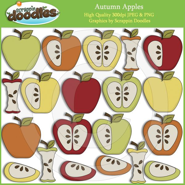 autumn apples - fall seasonal clip