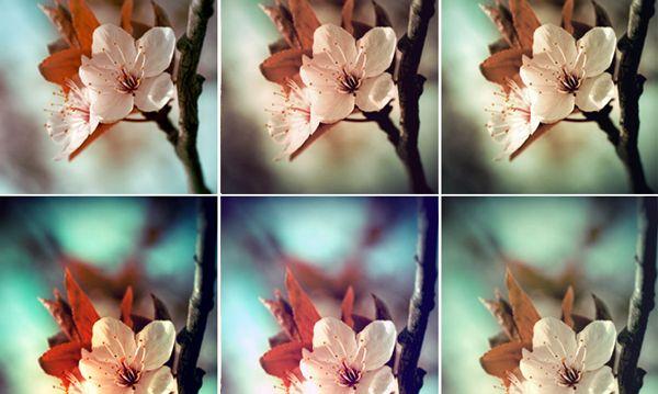 100 free photoshop actions   Photoshop   Pinterest   Coloring ...