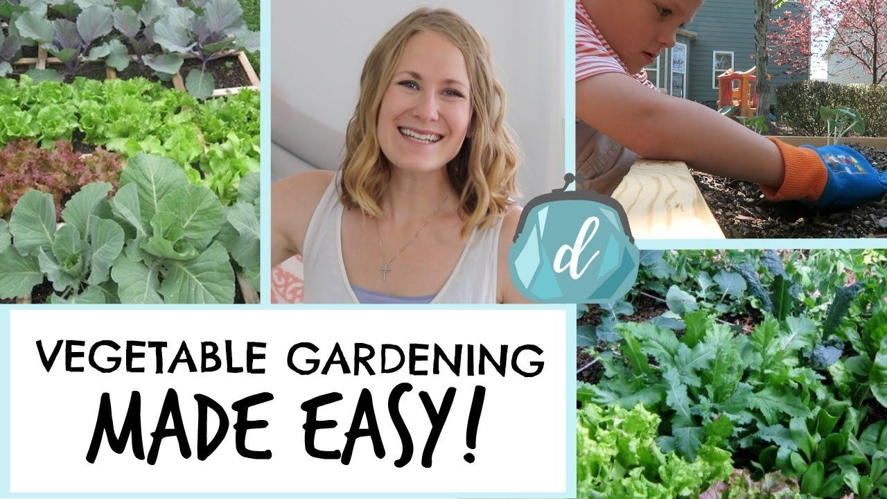 How To Start An EASY Vegetable Garden! (Small Space Square Foot Garden)  Https