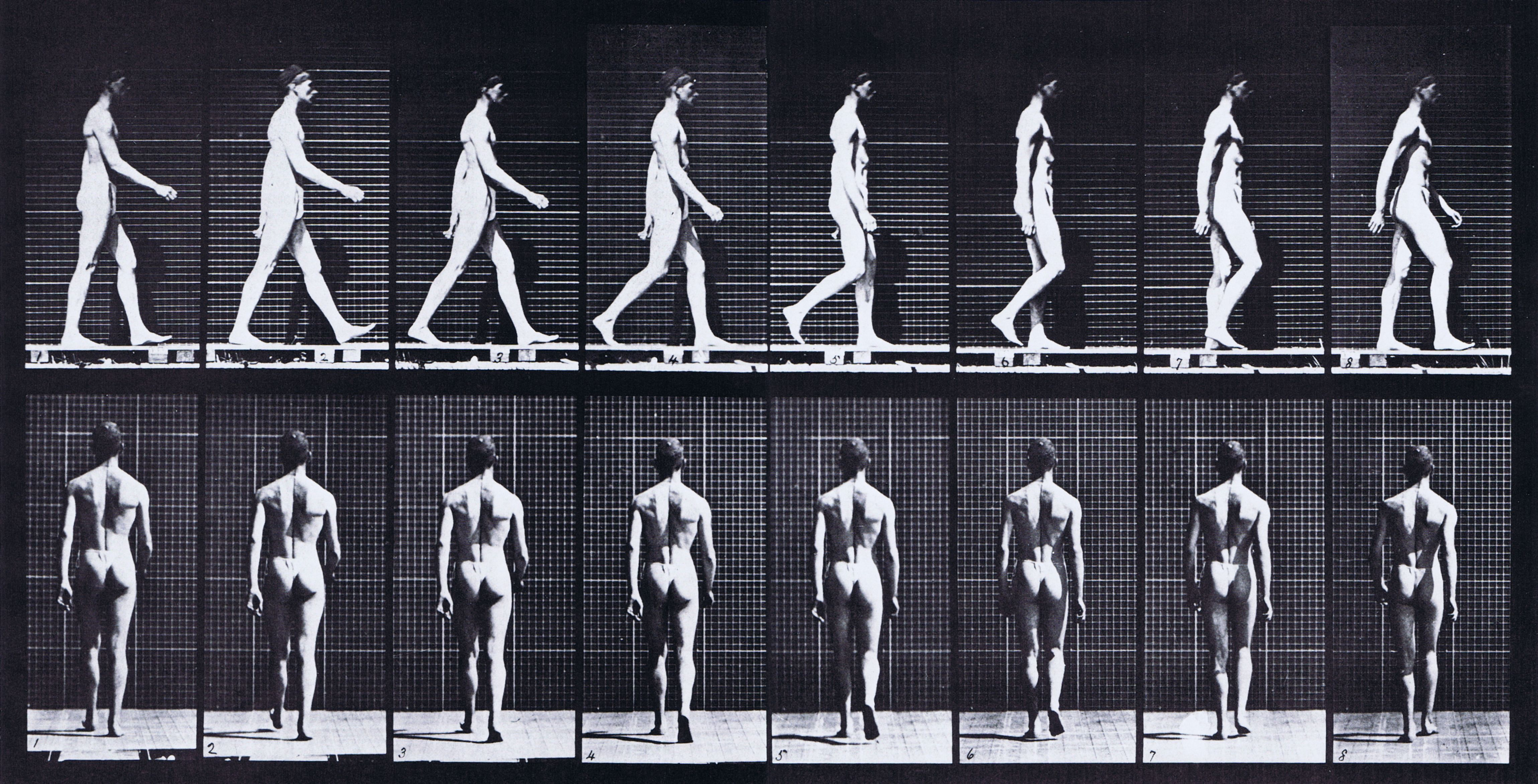 15++ Walking sequence ideas