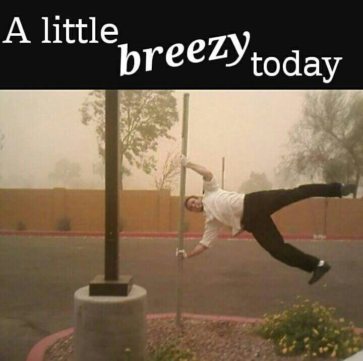 Windy Day Funny Weather Weather Memes Cold Weather Funny