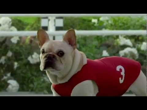 Pin By Creative Impact On Superbowl Vxli 2012 Commercials Funny