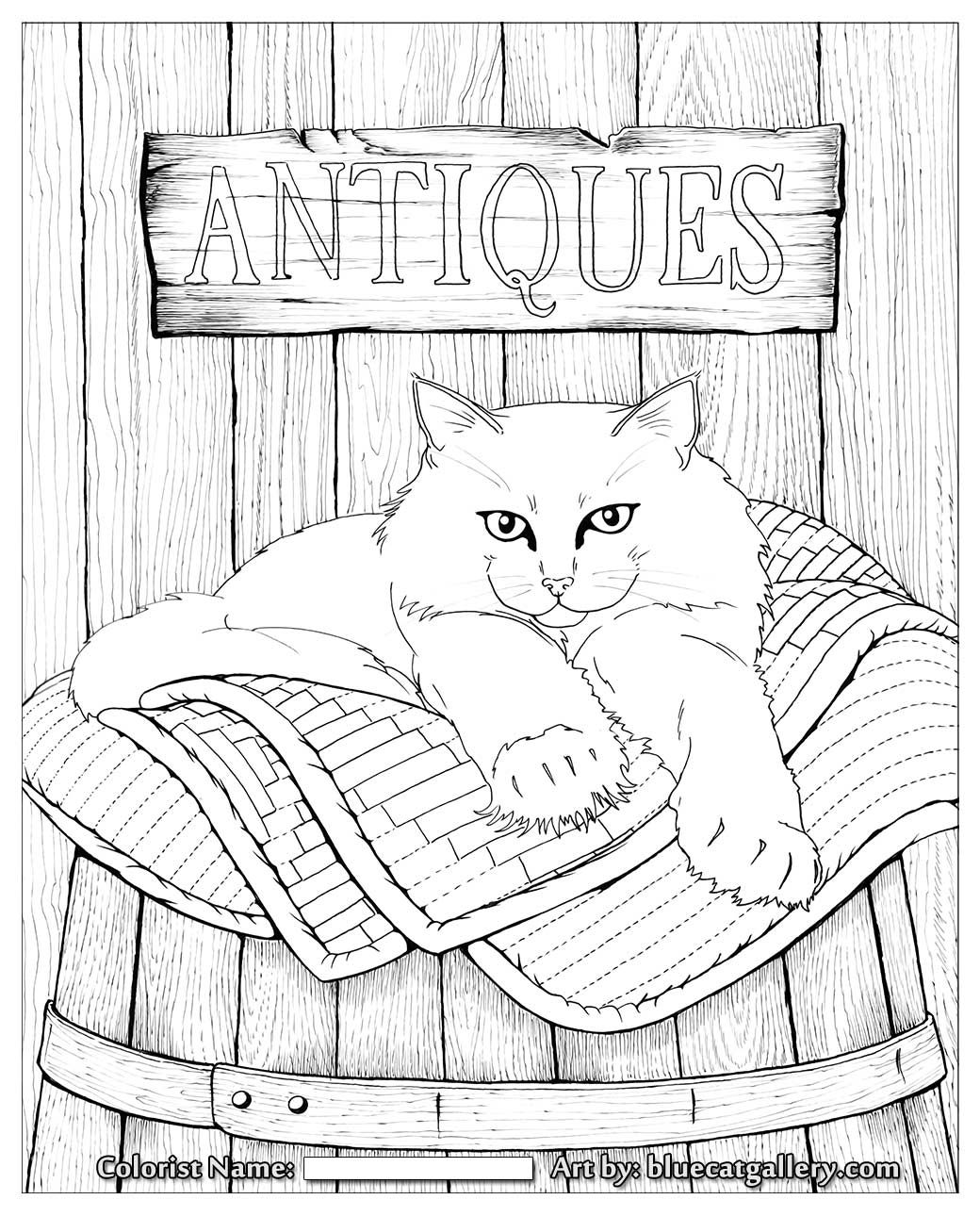 Bluecat Gallery Adult coloring