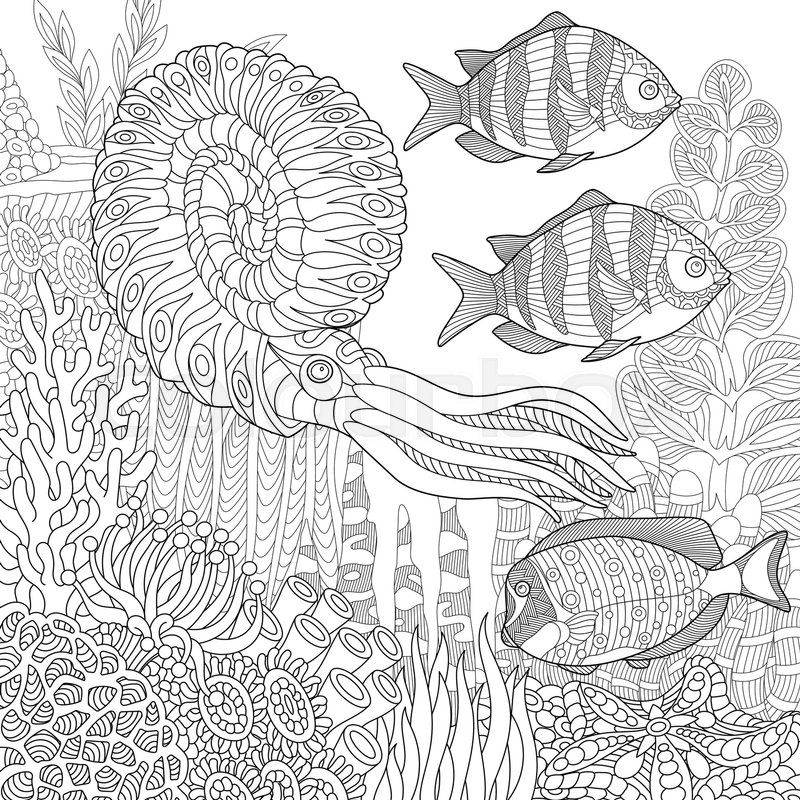 Composition Of Tropical Fish Calamari Squid Underwater Seaweed Corals And Starfish Freehand Sketch For Adult Anti Stress Coloring Book Page With