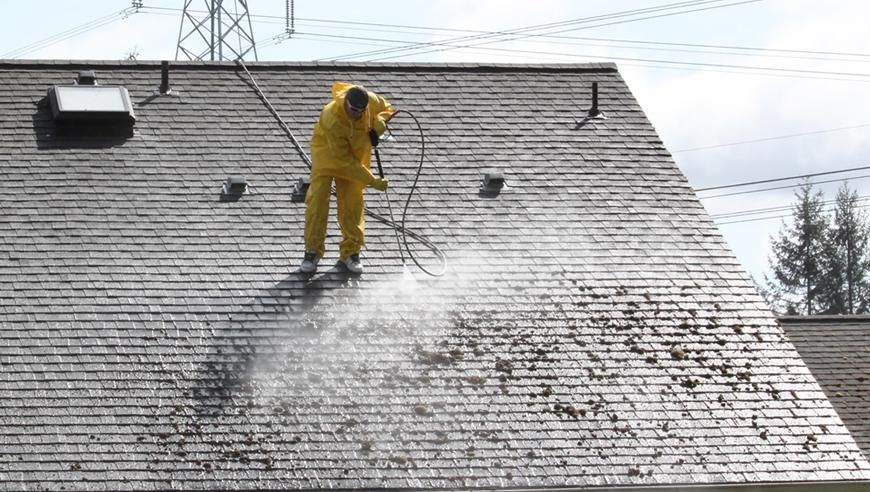 Roof Cleaning Pressure Washing Company Pittsburgh In 2020 Cleaning Gutters Roof Cleaning Window Cleaning Services