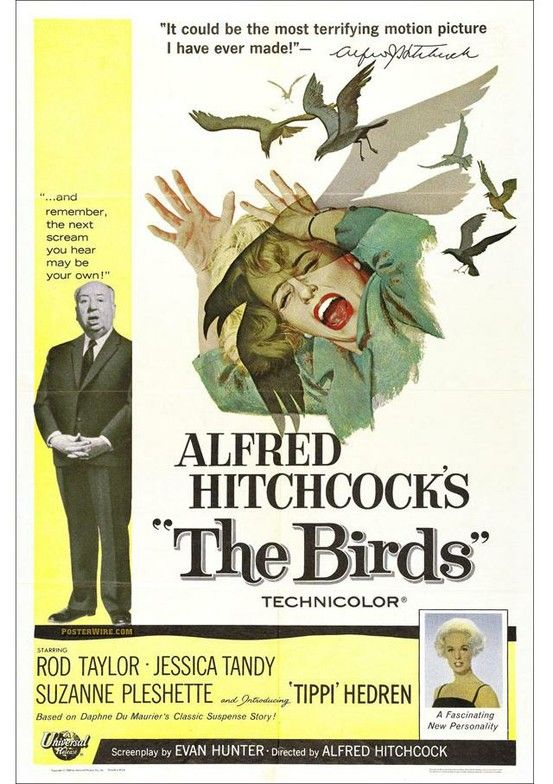 The Birds.....Alfred Hitchcock!