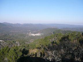 Sierra de los Palos Altos