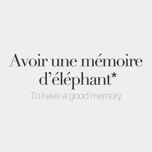 French Words — *Literal meaning: To have an elephant's memory.