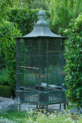 Pin By Yvon Bakker On Pigeons Antique Bird Cages Vintage Bird Cage Bird Aviary