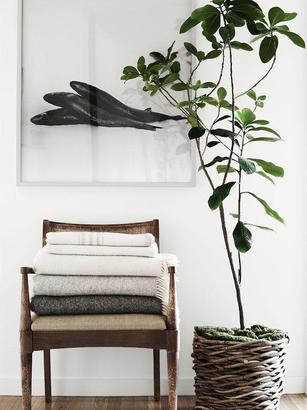 Cali Cool Design School Part 2 Natural Elements Design Seeker Interior Cheap Home Decor My Scandinavian Home