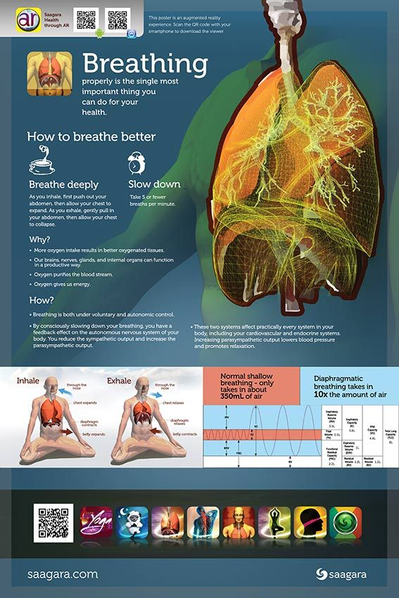 The Science of Breathing Poster use with the Saagara AR