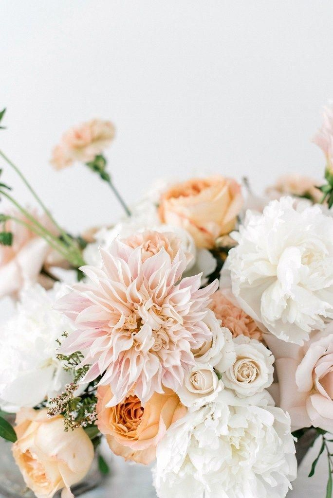 Romantic wedding colors in ivory, blush and peach featuring peonies, dahlias, and garden roses. Sum