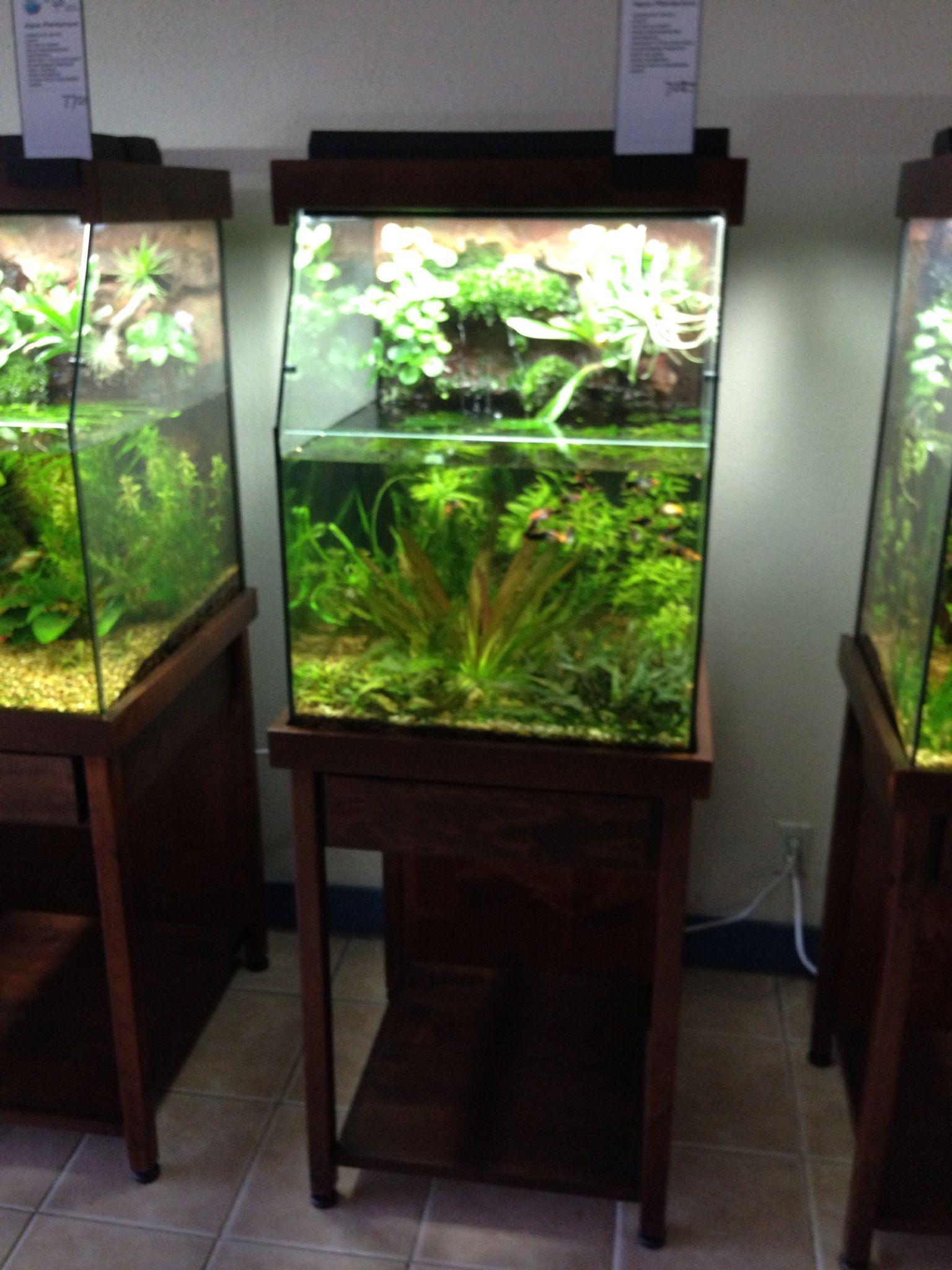 AquaPlantarium Cube & AquaPlantarium Cube | AquaPlantarium by DAS | Pinterest ... Pezcame.Com