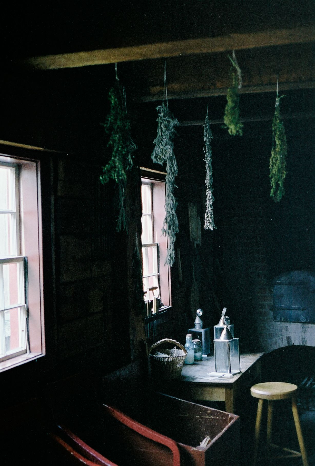 // hanging herbs from the ceiling [tim roth]