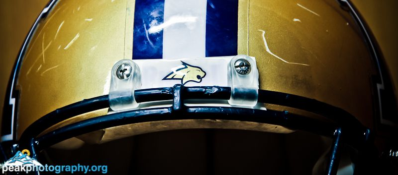 Bcats montana state football montana state montana