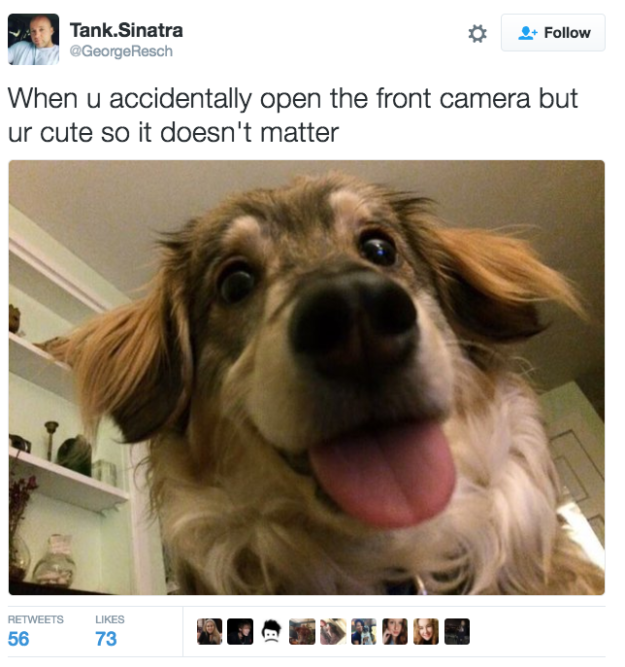 On technology:   21 Pure, Wholesome Tweets That Will Help You Through The Dark Winter