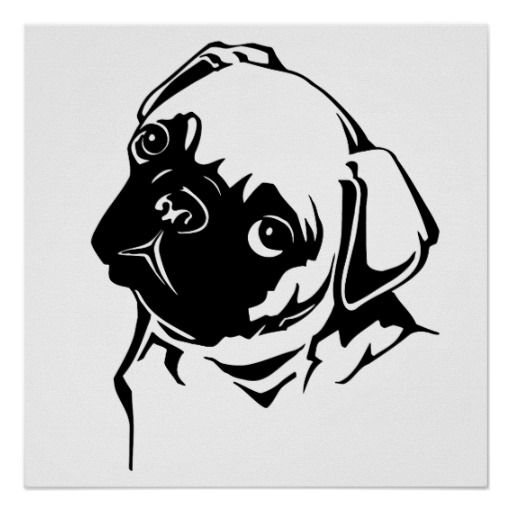 A Cute Black And White Drawing Of A Pug Dog A Cute Design On