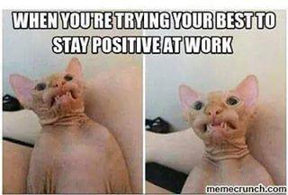 #twitter #funny #funnymeme #funnymemes #funnypic #funnypics #funnypictures #funnypicture #funnypicsdaily #hilarious #hoodmemes #hilariousmemes #hilariouspics #hilariousshit #wtf #lmao #meme