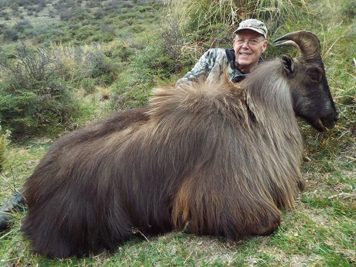 73 yr old Mountain Hunter free range on foot. John was