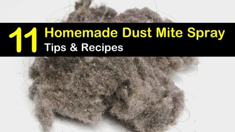 Getting rid of dust mites 11 homemade dust mite spray