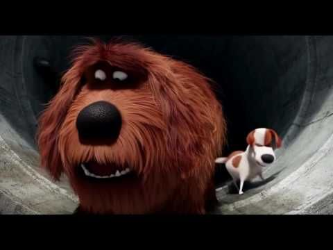 Max And Duke Sausage Party The Secret Life Of Pets Angel Tv