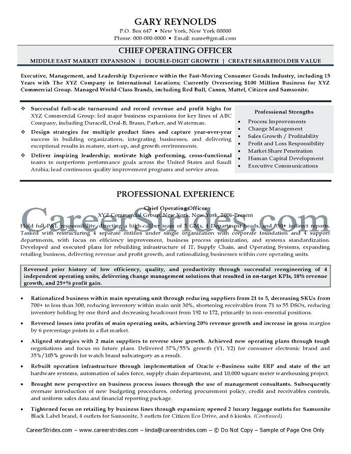 C Level Resume Examples Pinterest Resume examples, Executive - resume name examples