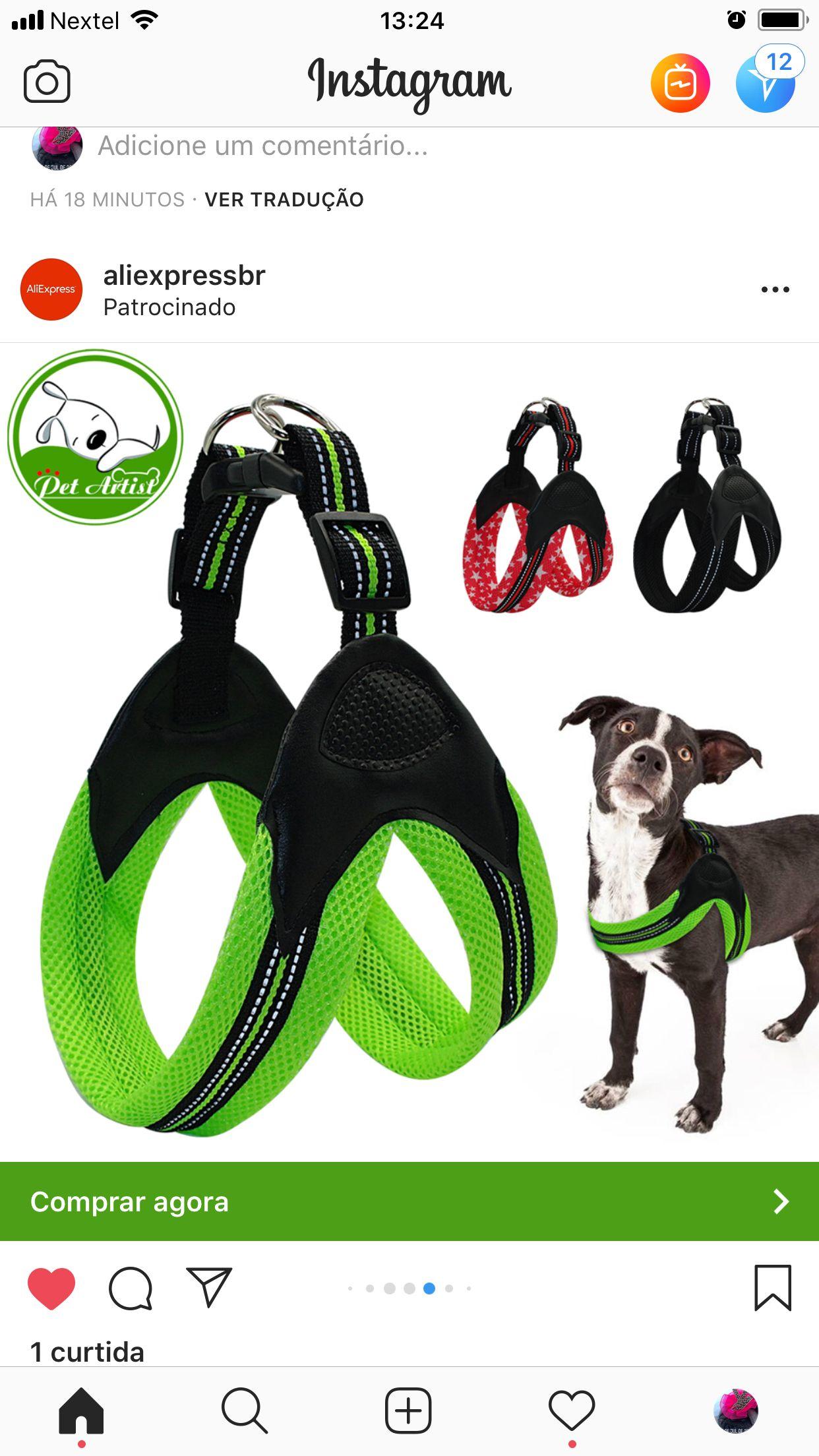 Collar para Perros MICHUR Leon Collar para Perros Cuero Cuero Disponible en Diferentes tama/ños con Lirios pedrer/ía y aplicaci/ón de Cabeza de le/ón Gris-Negro Collar para Perros