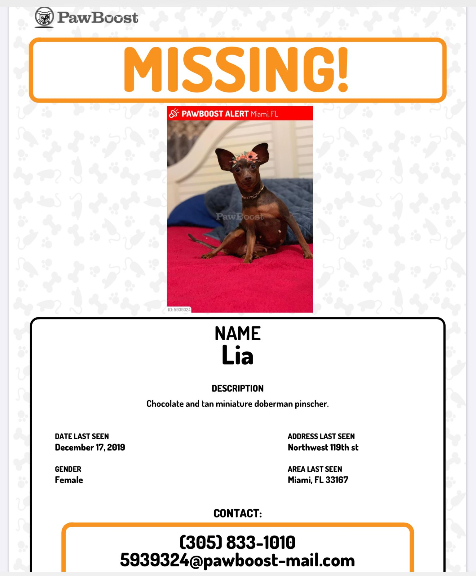 Pin By Nancy Gomes On Animals Lost Pets Losing A Pet Miniature Doberman Miniature Doberman Pinscher