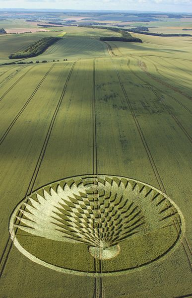 The Beautiful World Of Crop Circles Photo Gallery Crop Circles